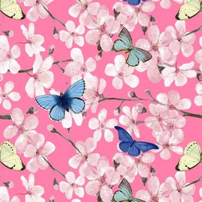 Cherry Blossom Butterflies in watercolor