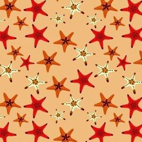 Starfish (dark background)
