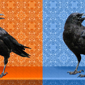 Orange Crow, Blue Crow