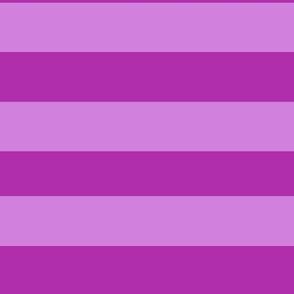 Cheshire Cat - Purple