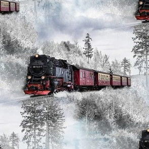 the winter express