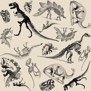 Museum Animals, Dinosaur Skeletons on Cream, Vintage Dinos