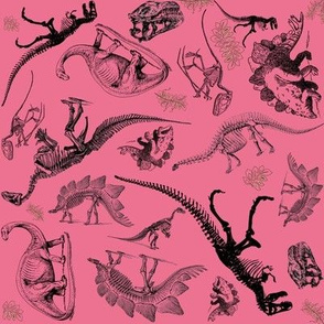 Dinosaur Toile on Pink