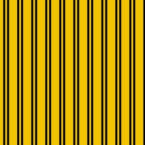 Double Stripes in Yellow and Black