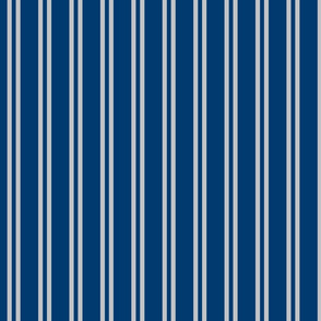 Double Stripes in Blue and Grey