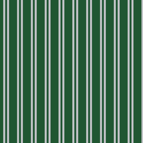 Double Stripes in Green and Grey
