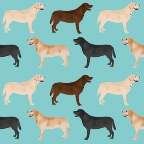labradors labrador retrievers yellow lab chocolate lab black lab cute labradors dogs pet dog labrador pattern for fabrics