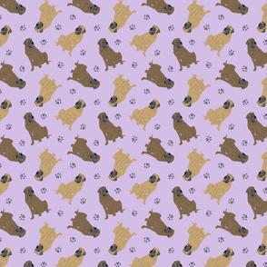 Tiny Mastiffs - purple