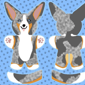 Kawaii Corgi plushie on blue - merle