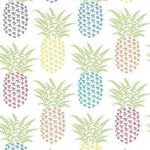 rainbow pi-napple pineapple