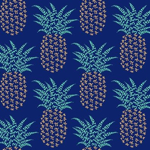 pi-napple pineapple - hawaiian nerd shirt