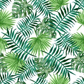 monstera and palm leaves - plain
