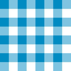 "1"" Bright blue and white gingham"