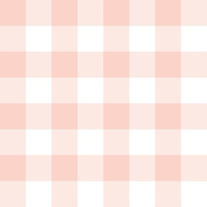 """1"""" pale coral and white gingham check"""