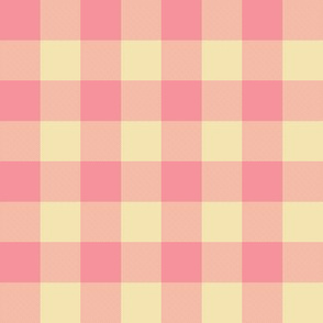 pink creamsicle one-inch gingham