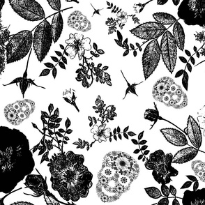 Black roses and  floral skulls graphic