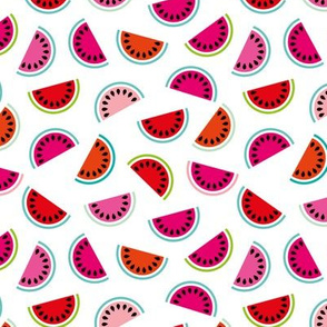 Lush summer watermelon fruit geometric water melon colorful tropical retro circle design red pink mint