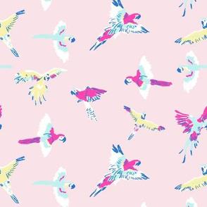 parrot_pink
