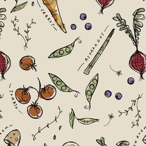 Garden sketchbook, colour