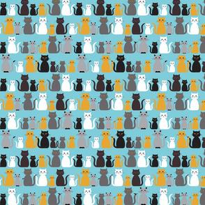 Rows of Kitties