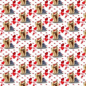 Yorkie Pink Red hearts Small