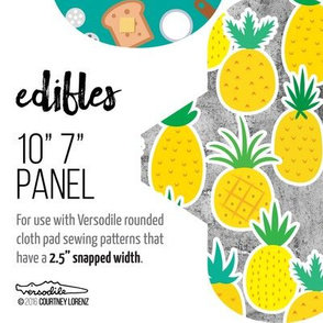 10in 7in Cloth Pad Panel for Fat Quarters EDIBLES