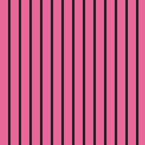 Curses and Spells Stripes Black and Pink