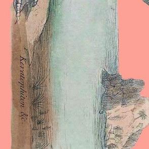 Pre-Linnean Flamingo Border Print ~ Duchess