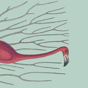 Pre-Linnean Flamingo Border Print ~ Eau~de~Nil