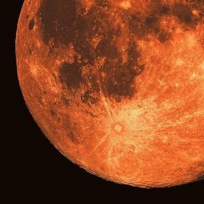 "11"" supermoon moonrise"