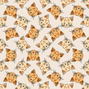 Orange Tabby Cats on Beige