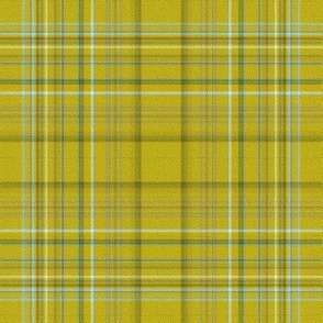 Chartreuse Mad For Plaid