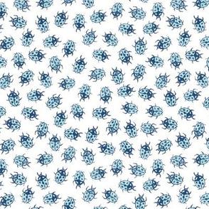 light blue ladybugs