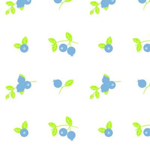 Maine Blueberries in Lime and Light Blue
