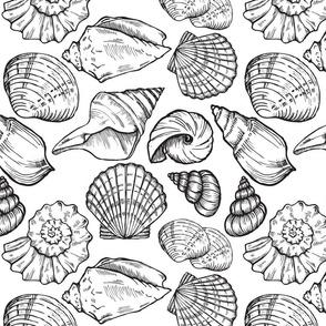 sea_shell_sim_1