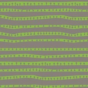 pod stripes in cafe + celery