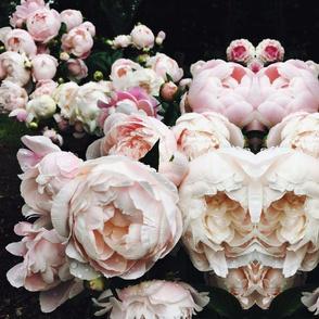 Dark Floral 4