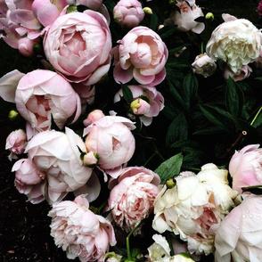 Dark Floral 3