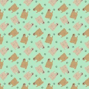 Tiny Wheaten Terriers - green