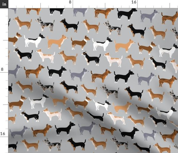 Chihuahua Dogs Cute Pet Dog Grey Merle B Spoonflower