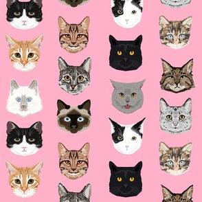 cat faces cute cats sweet kittens kitty cute c at fabrics
