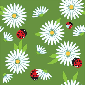 daisies and ladybugs