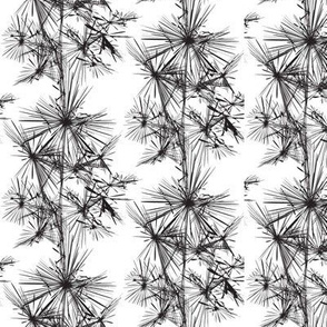 16-16L Abstract Pine Modern Black White || Home Decor Low Volume Tree Forest _miss chiff designs
