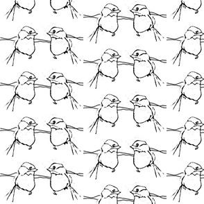 birdfight - black & white