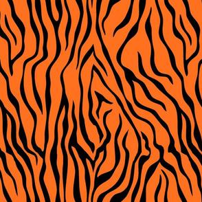 Tiger #14