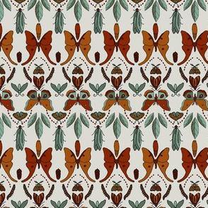 Moth Lifecycle Sm
