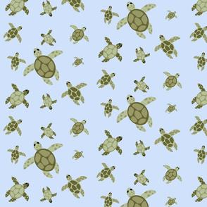 Sea Turtle Dance