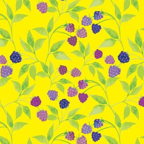 Yellow Blackberries