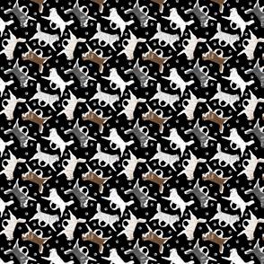 Trotting Siberian Husky and paw prints - tiny black