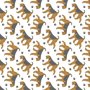 Trotting Airedale Terrier and paw prints - white